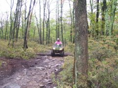 Eastwood Trail Riding